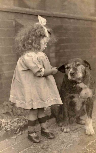 Little Girl And Her Very Patient Dog Pictorial History