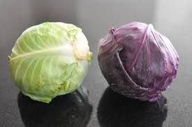 Cabbage (red or green) is cooling and sweet. It clears heat, lubricates the intestines and stops cough. Cabbage can also help with hot flashes, the common cold and frosbite. Wash the area with warm cabbage for frostbite. Make a tea or soup for common cold or cough. Reference: The Tao of nutrition, Maoshing Ni - Cathy McNease - Sevenstar, Communications - 1987