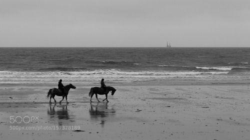Normandy Beach - Horse riding on a beach in Normandy France -... -  Normandy Beach - Horse riding on a beach in Normandy France - by mathieupapion - http://ift.tt/1VAUqlF