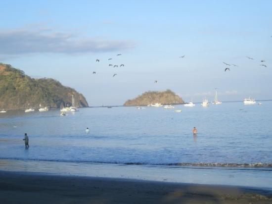 Foto de Playas del Coco, Provincia de Guanacaste