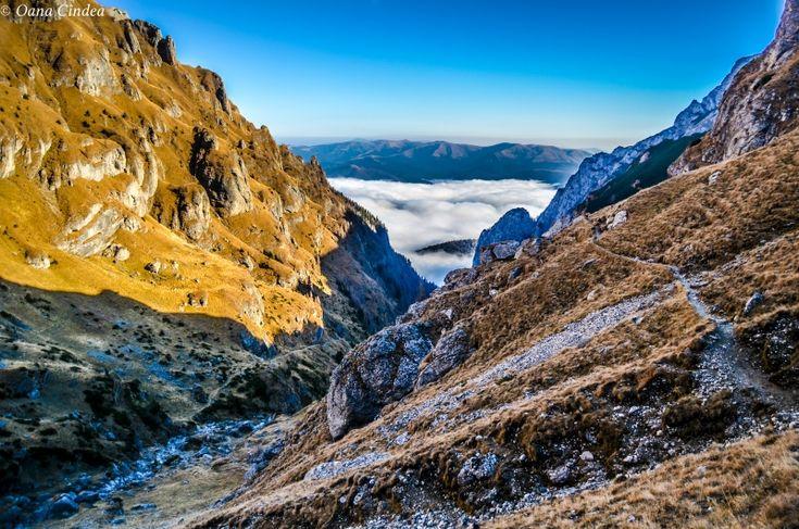 Valea Cerbului, Bușteni
