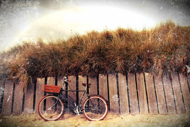 To The Beach bike