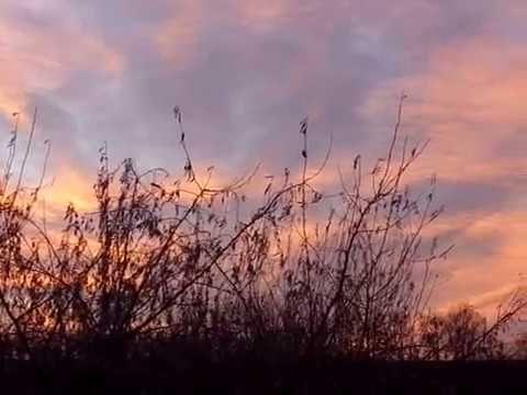 Сияние красок заката! Чем полезны прогулки на Закате Солнца?