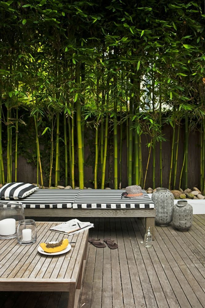 love the bamboo and the grey. ...HINT: to prevent bamboo's infamous spread, plant bamboo within planters. The roots are then contained and cannot form running shoots throughout your yard... and the neighbor's yard...