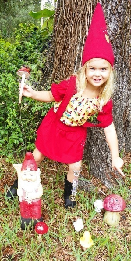 Baby Gnome: 16 Best People Dressed As Garden Gnomes Images On