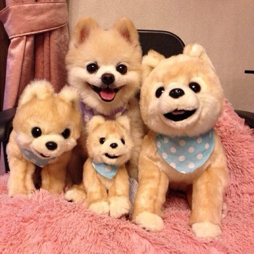 lifelike stuffed animals