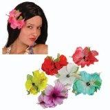Hawaii-Blume Hibiskus mit Clip, 1 Stück sortiert