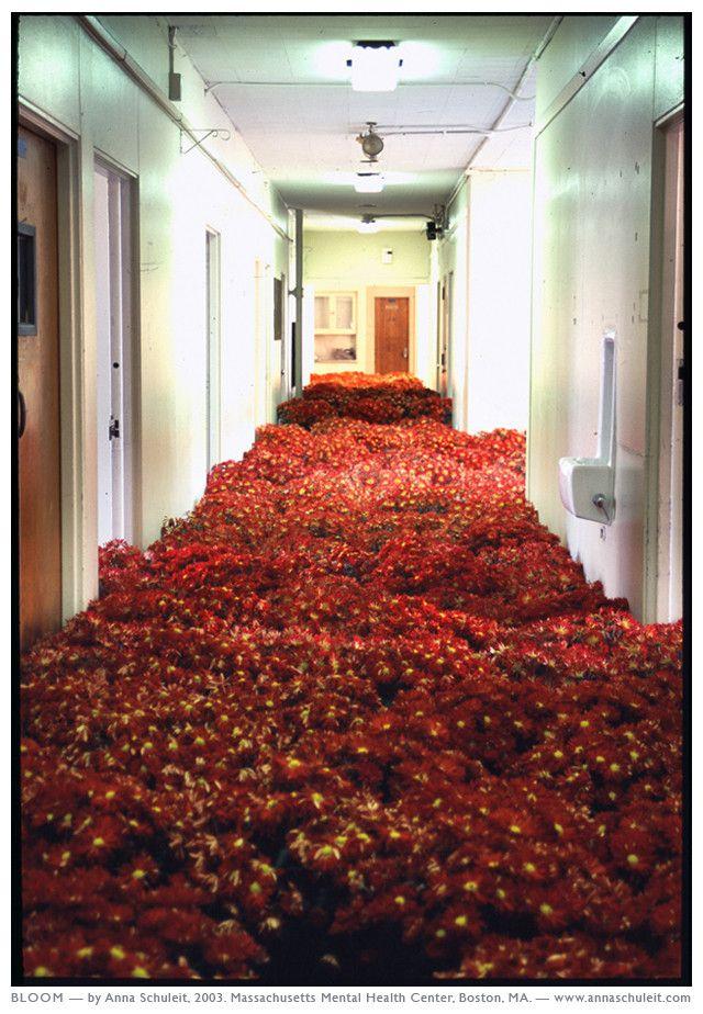 site specific installation by Anna Schuleit. Mass Mental Health Center, Boston, MA