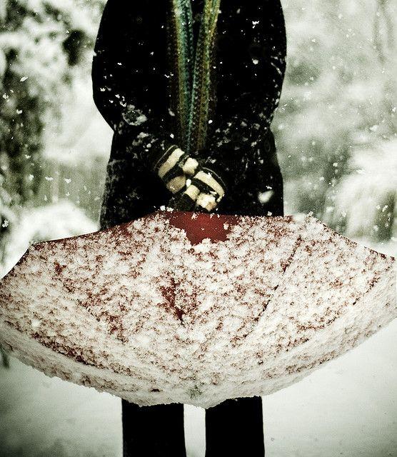 Snow #photography #snow