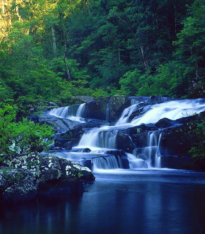 Barrington Tops Waterfalls https://www.facebook.com/pages/MANSFIELD-COTTAGE-BARRINGTON-Barrington-Tops-Holiday-Accommodation/341811962165 Ph 0265547780 M 0431734352 Email jill.perram@bigpond.com ... farm stay holiday country river national parks family children kids animals