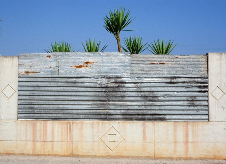 Yucche by Cosimo Terlizzi   2010
