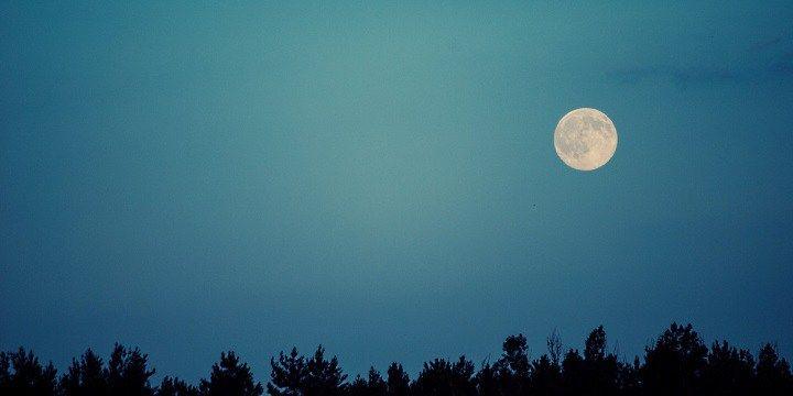 vinjournalen.se -  Vin Fakta : Vinentusiast och mångalen? |  Månen påverkar oss på mängder av olika sätt. En del människor har svårt att sova när det är fullmåne, andra är rädda för supermånen som påstås göra folk galna. Och sedan finns det ju varulvar… Forskare har sedan länge berättat för oss att månens gravitation påverkar jordens tidvatten och då även... http://wp.me/p73gTR-3Bx