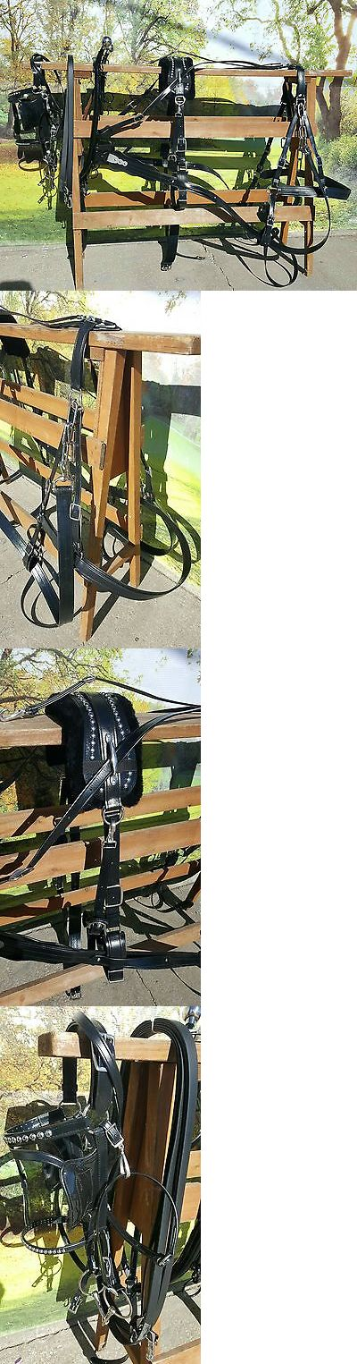 Other Driving Equipment 13376: Frontier Special Amish Made Beta Horse, Mule,Haflinger Size Harness New Complete BUY IT NOW ONLY: $650.0
