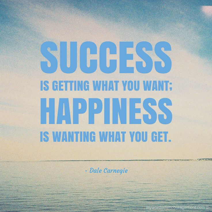 happinesss is success