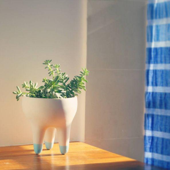 Coleção Raiz, vasos de porcelana Paz! design - Raiz Collection, porcelain planter Paz! design