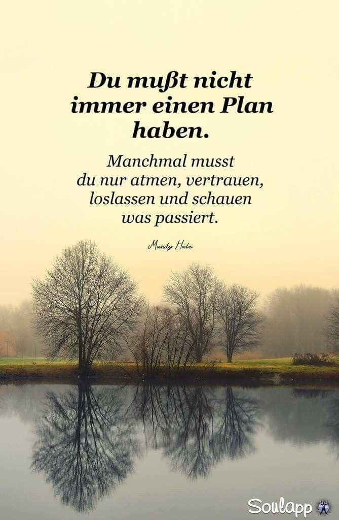 Manchmal ist der beste Plan,keinen Plan zu haben. Auch wenn man(n) manchmal kurz vorm Wahnsinn ist.
