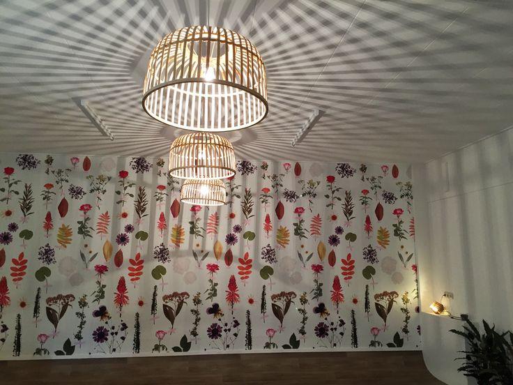 De bamboe lampen in mijn ruimte komen bij de Xenos vandaan. Behang op de achtergrond is van @onszelf