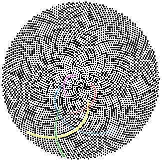 Los números de Fibonacci en la naturaleza http://www.maths.surrey.ac.uk/hosted-sites/R.Knott/Fibonacci/fibnat.html#