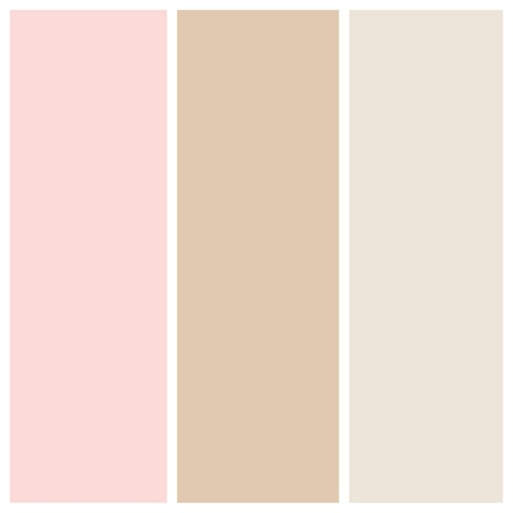 Best 25 Blush Color Palette Ideas On Pinterest: Best 25+ Blush Pink Weddings Ideas On Pinterest