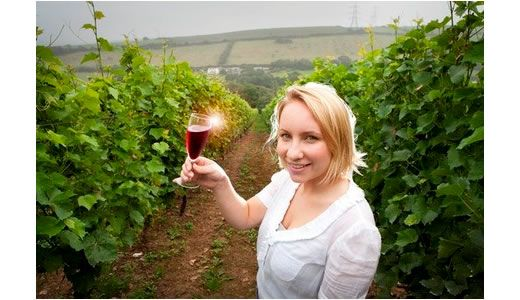 Young wine expert helps Camel Valley Vineyard enjoy its busiest summer