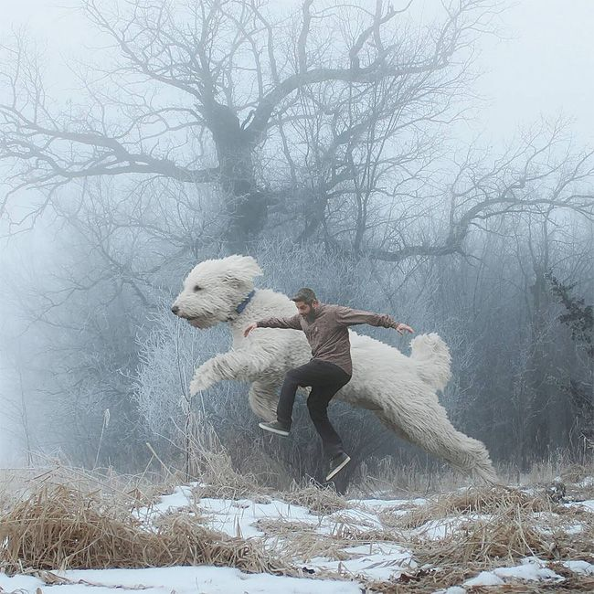This Guy Photoshops His Dog Into A Giant In All His Pics And It's Hilarious | <O>