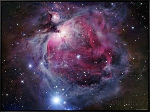 The Orion Nebula Framed Canvas Print by Stocktrek Images at AllPosters.com
