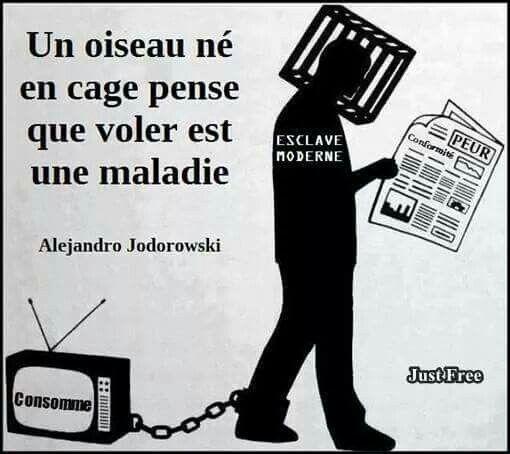 Alexandre Jodorowski