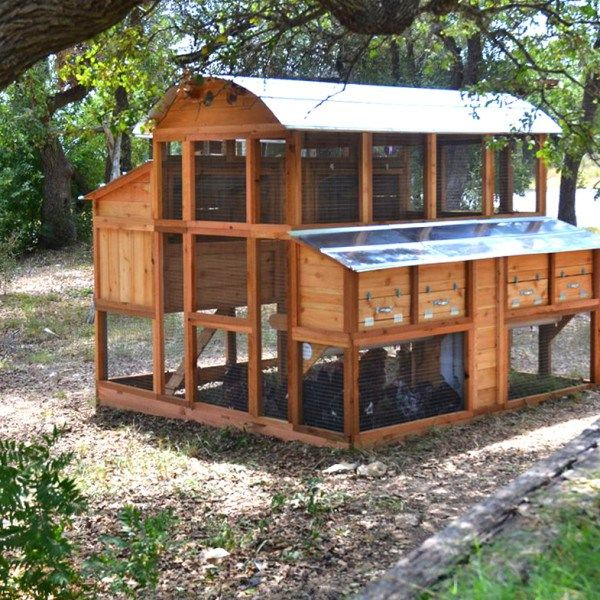 108 best coop building plans images on pinterest chicken for Plans for a chicken coop for 12 chickens