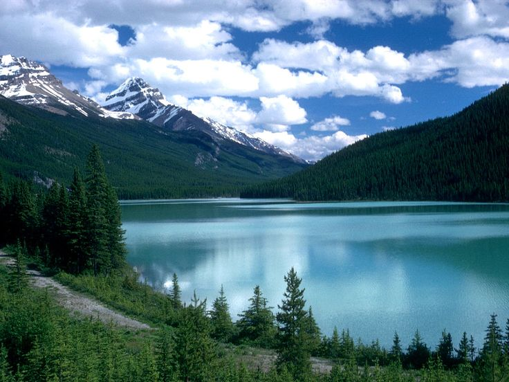Lake Louise in Alberta; wanna go and snap pictures of the wildlife