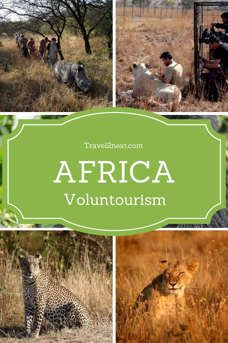 Africa voluntourism. Voluntourism is thriving. The concept of volunteering while travelling has been gaining popularity over the last five to 10 years.