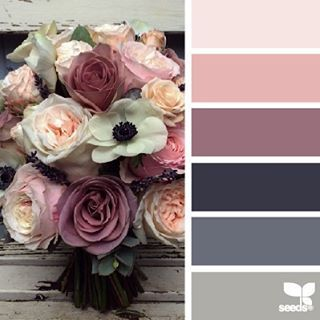 today's inspiration image for { color bouquet } is by @fairynuffflower ... thank you, Steph, for generously sharing your incredible + inspiring talent in #SeedsColor !