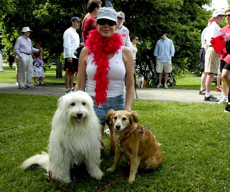 Take the dog on a history walk with the Chicago History Museum