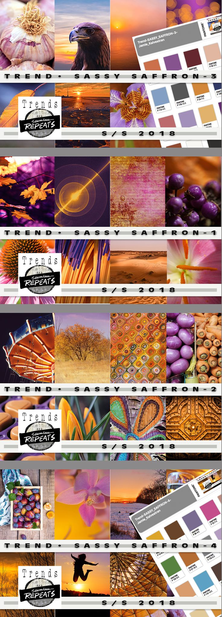 TREND - Sassy Saffron Everything you need to create your own trend board, mood board or other presentation or product.      85 - Creative Commons CC0 Images - average size approximately 1200px x 1900px     4 - Pantone Color Palettes (CMYK - Coated)     4 - CMYK (Pantone Color Bridge) .aco files for each color palette