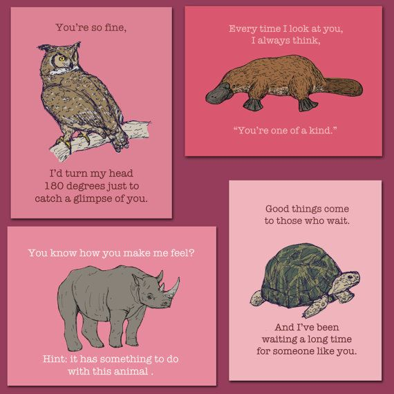 16 best images about Valentines Day Animals – Animal Valentine Cards