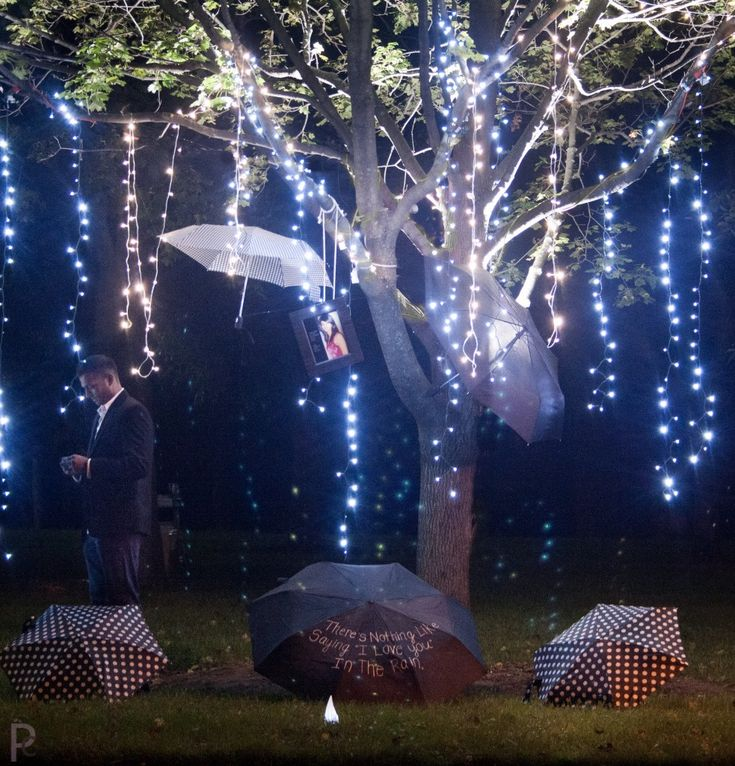 Proposal Tree in lights