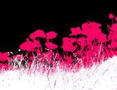 White grass with pink poppy flowers. Vector — Stock vektor