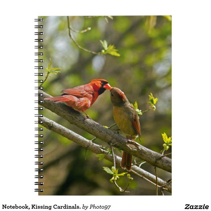 Notebook, Kissing Cardinals. Spiral Notebook