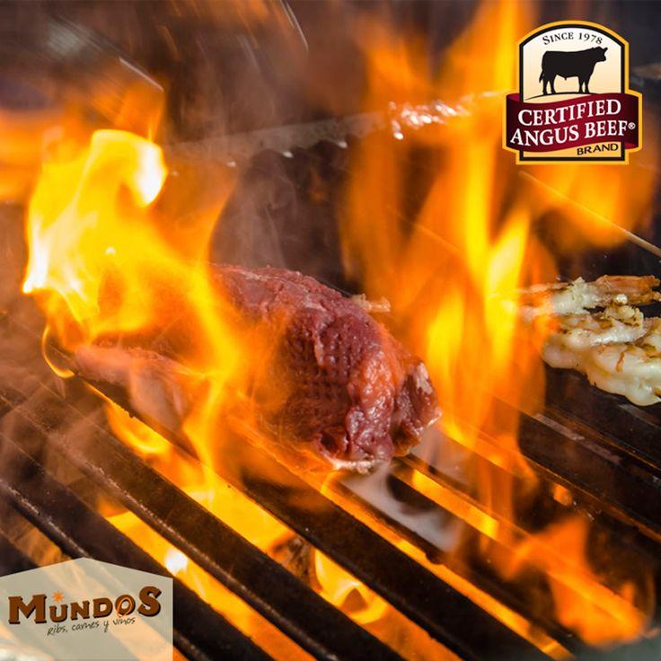 """""""¿ #Sabíasque la marca #CertifiedAngusBeef es la mejor marca Angus que existe? Ven a #MundosRestaurante y disfrútala.  ¡La mejor carne del mundo! Reserva en 5371835 o en www.mundos.com.co"""""""