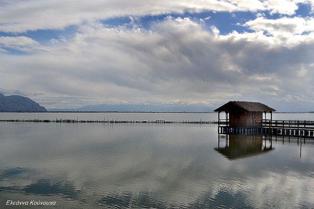 Λιμνοθάλασσα Μεσολογγίου -Messolonghi lagoon   Flickr - Photo Sharing!
