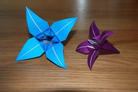 simple origami lily flower, see for a tutorial http://u-handbag.typepad.com/uhandblog/2008/05/simple-origami.html#