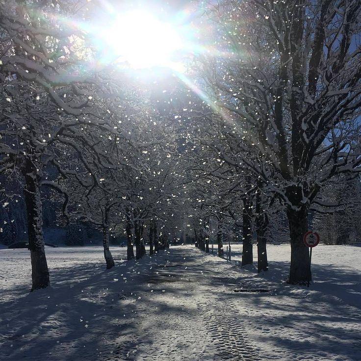 """578 Likes, 7 Comments - Tourismus Oberstdorf (@oberstdorf.de) on Instagram: """"Alle die heute den ersten Wintertag ❄☀ genießen durften sind wirklich zu beneiden!! 📷:…"""""""