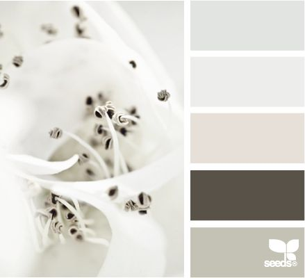 That's it! One of fav ones. This will be my reference for my living room.: Color Palettes, Design Seeds, Color Schemes, Living Room, Paint Colors, Color Combinations, Master Bedroom, Colour Palettes, Macro Tints