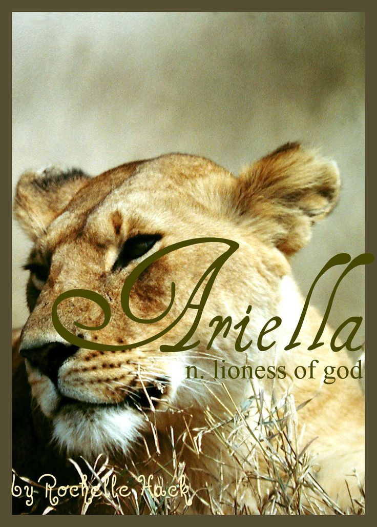 Baby Girl Name: Ariella. Meaning: Lioness of God. Origin: Hebrew; French. http://www.pinterest.com/vintagedaydream/baby-names/
