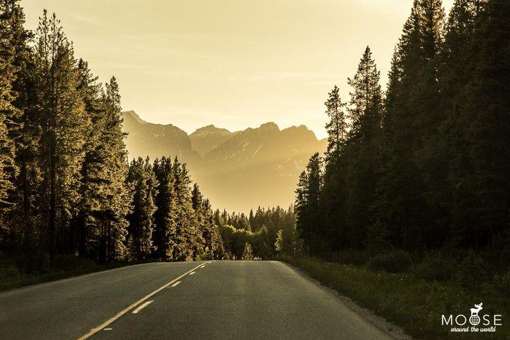 Unser Reiseguide für den Banff Nationalpark