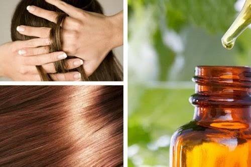 Dans la suite de cet article, nous allons partager avec vous quelques formules maison, qui sont conçues pourprotéger et nourrir les cheveux.