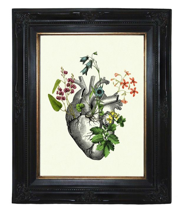 Bunte Blumen wachsen auf einem anatomischen Herz. Morbider Gothik Kunstdruck einer Collage aus antiken viktorianischen Stichen, Illustrationen und eig…
