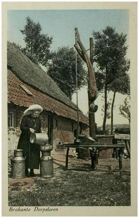 Boerin giet melk over in de melkbus. Normaal natuurlijk niet met de poffer op. Deze is speciaal voor de foto opgezet.