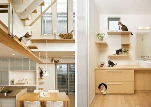 more awesome cat furniture