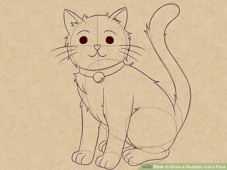 How To Draw A Realistic Cat S Face 11 Steps With Pictures Draw A Cat Drawing Cat Face Cat Drawing