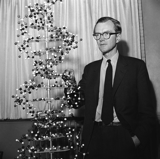 Maurice Wilkins (1916 - 2004)                                                                                                                                                                                 More
